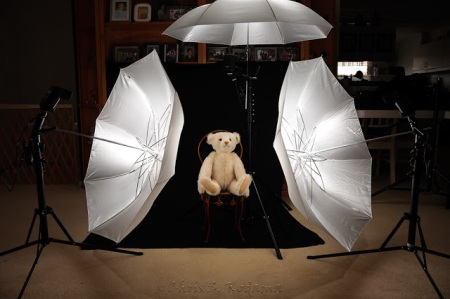 teddy umbrella